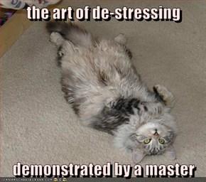Stretch, Nap, Repeat