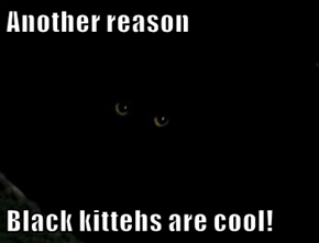 Another reason  Black kittehs are cool!