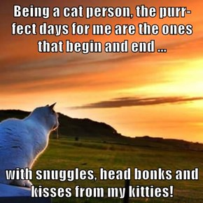 Being a cat person, the purr-fect days for me are the ones that begin and end ...  with snuggles, head bonks and kisses from my kitties!