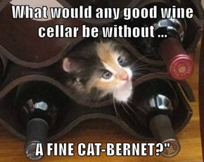 What would any good wine cellar be without ...  A FINE CAT-BERNET?""