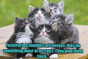 So they can have forever homes.