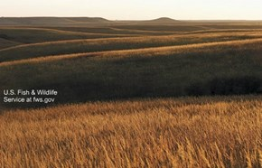 The Flint Hills of Kansas, sublime on an autumn day