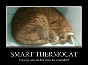 SMART THERMOCAT