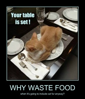 WHY WASTE FOOD