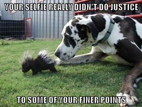 YOUR SELFIE REALLY DIDN'T DO JUSTICE  TO SOME OF YOUR FINER POINTS