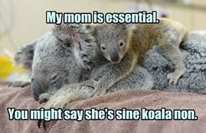 Marsupial humor.