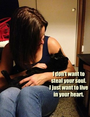 I don't want to steal your soul.   I just want to live in your heart.