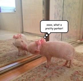 oooo, what a pretty porker!