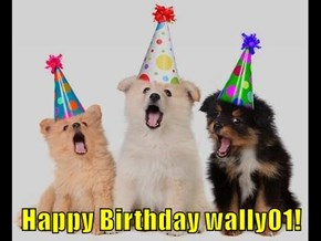 Happy Birthday wally01!