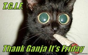 T.G.I.F.  Thank Ganja It's Friday