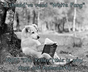 "I should've read ""White Fang""  NOT ""Ole Yeller""(this is why dogs eat homework)"