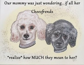Our mommy was just wondering.. if all her Cheezfrends  *realize* how MUCH they mean to her?