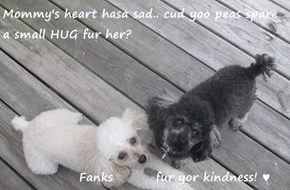 Mommy's heart hasa sad.. cud yoo peas spare a small HUG fur her?              Fanks         fur yor kindness! ♥