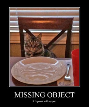 MISSING OBJECT