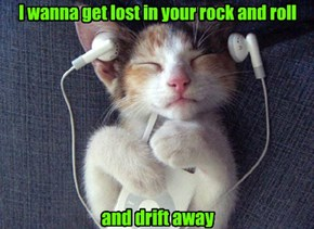 I wanna get lost in your rock and roll