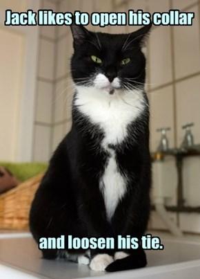 He's an informal sort of cat.