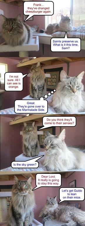 Cheez-changes June 2015: cat nerds react
