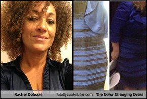 Rachel Dolezal Totally Looks Like The Color Changing Dress