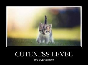 CUTENESS LEVEL