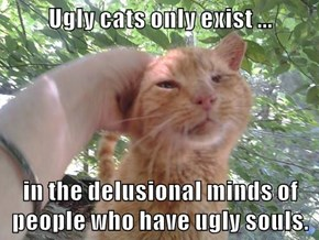 Ugly cats only exist ...  in the delusional minds of people who have ugly souls.
