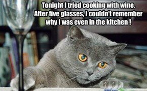 Tonight I tried cooking with wine. After five glasses, I couldn't remember why I was even in the kitchen !