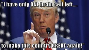 """I have only ONE brain cell left....  to make this country GREAT again!"""