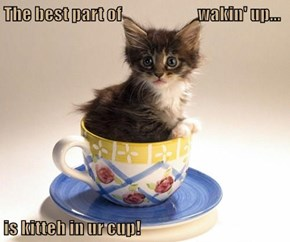 The best part of                        wakin' up...  is kitteh in ur cup!