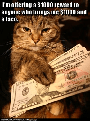 I'm offering a $1000 reward to anyone who brings me $1000 and a taco.