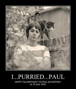I...PURRIED...PAUL