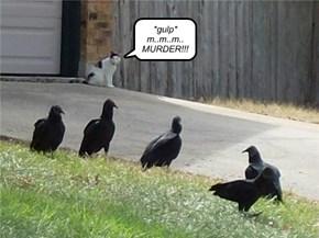 *gulp* m..m..m.. MURDER!!!