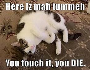Here iz mah tummeh  You touch it, you DIE.