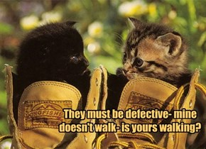 They must be defective- mine doesn't walk- is yours walking?