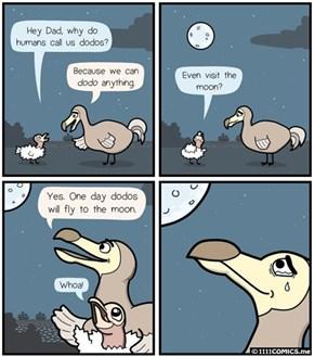 The Dodos Didn't Go Extinct