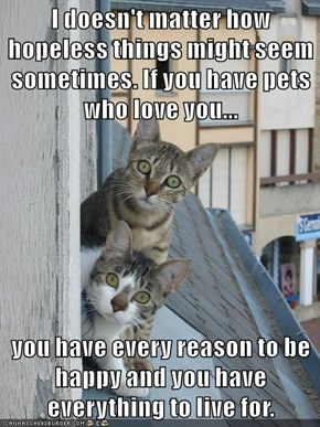 I doesn't matter how hopeless things might seem sometimes. If you have pets who love you...  you have every reason to be happy and you have everything to live for.