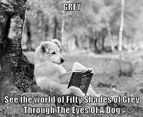 GREY  See the world of Fifty Shades of Grey Through The Eyes Of A Dog