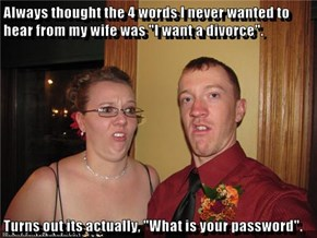"Always thought the 4 words I never wanted to hear from my wife was ""I want a divorce"".   Turns out its actually, ""What is your password""."