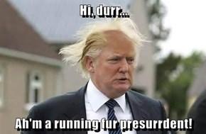 Hi, durr...  Ah'm a running fur presurrdent!