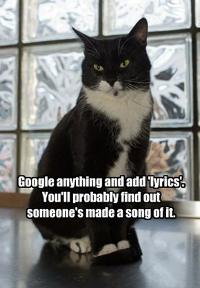 Google anything and add 'lyrics'. You'll probably find out someone's made a song of it.
