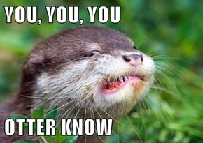 YOU, YOU, YOU  OTTER KNOW