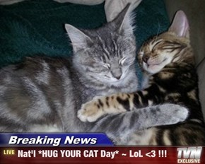 Breaking News - Nat'l *HUG YOUR CAT Day* ~ LoL <3 !!!