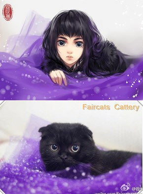 This Artist Transformed Cats Into Hot Anime Girls and I Don't Know How to Feel