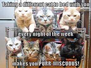 Taking a different cat to bed with you  every night of the week makes you PURR-MISCUOUS!