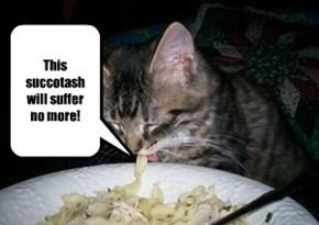 Says Sylvester!