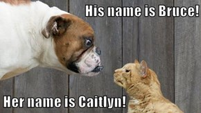 His name is Bruce!  Her name is Caitlyn!
