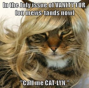 The kitty formerly known as ...