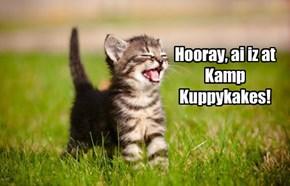 Kamper has a happy