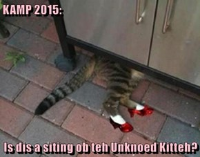 KAMP 2015:  Is dis a siting ob teh Unknoed Kitteh?