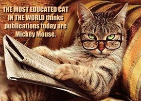 THE MOST EDUCATED CAT IN THE WORLD thinks publications today are Mickey Mouse.