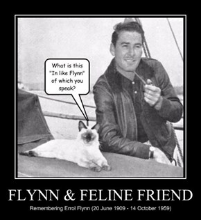 FLYNN & FELINE FRIEND
