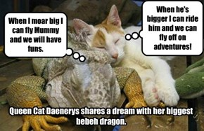 Game Of Thrones for Childs:  Queen Cat Daenerys.